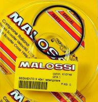 SEGMENT MALOSSI JEU BOOSTER+NITRO MHR SEG3513974